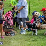 Paws To The Park at the Arboretum Bermuda, May 12 2018-3350