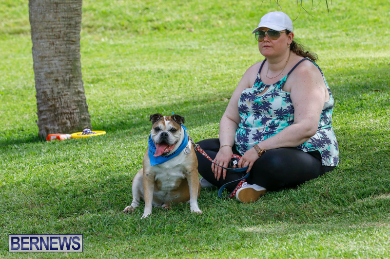 Paws-To-The-Park-at-the-Arboretum-Bermuda-May-12-2018-3424