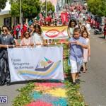 Santo Cristo Dos Milagres Festival Bermuda, May 6 2018-1901