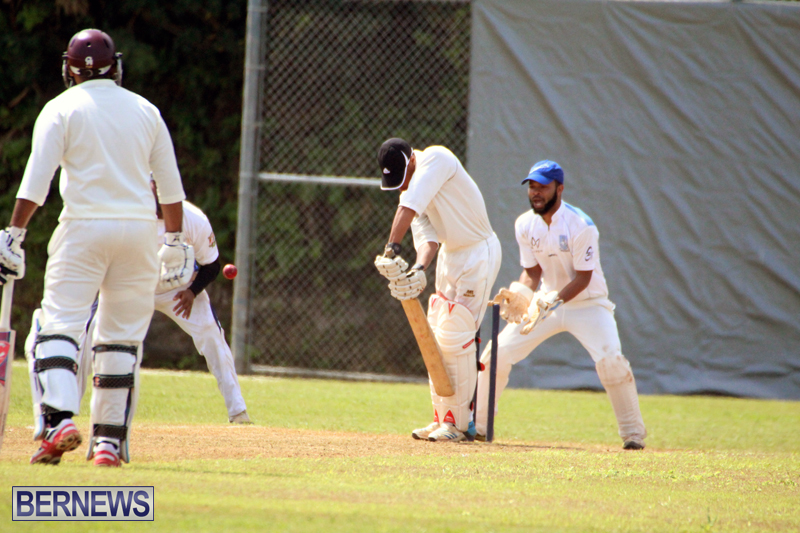 cricket-Bermuda-May-9-2018-10