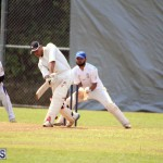 cricket Bermuda May 9 2018 (11)