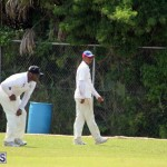 cricket Bermuda May 9 2018 (5)