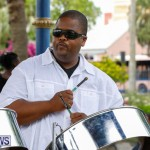 Bermuda Heroes Weekend Pan In The Park Event, June 17 2018-3880