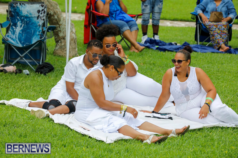 Bermuda-Heroes-Weekend-Pan-In-The-Park-Event-June-17-2018-3894
