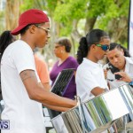 Bermuda Heroes Weekend Pan In The Park Event, June 17 2018-3927