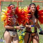 Bermuda Heroes Weekend Parade of Bands Lap 1, June 18 2018-4489