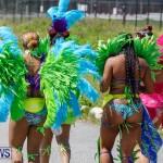 Bermuda Heroes Weekend Parade of Bands Lap 1, June 18 2018-4786