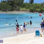 Clarien Bank Iron Kids Triathlon Carnival Bermuda, June 23 2018-6453