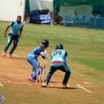 Cricket Bermuda June 3 2018 (19)