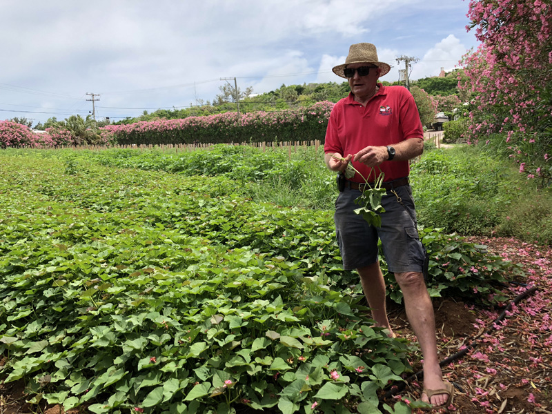 Foodie field trip Bermuda June 2018 (6)