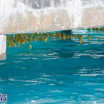 Rubber Duck Derby Bermuda, June 3 2018-2-436