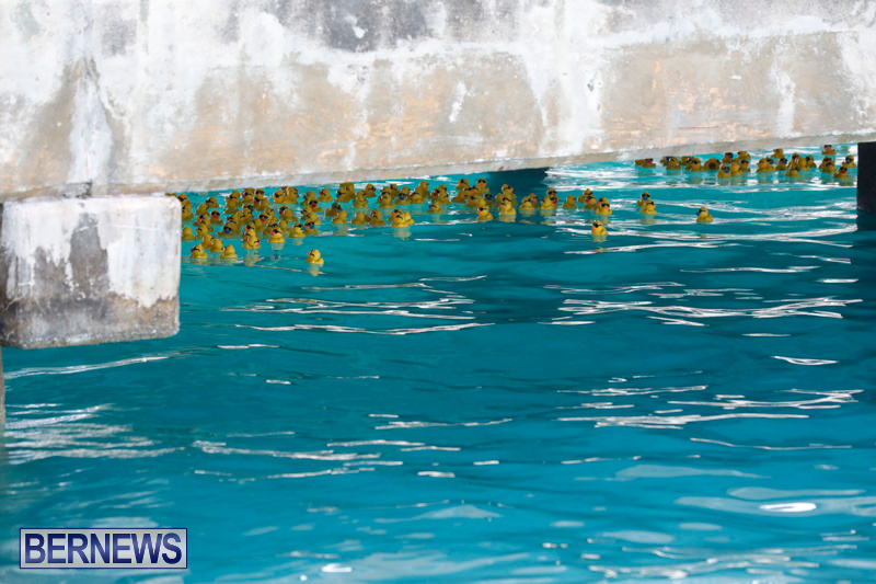 Rubber-Duck-Derby-Bermuda-June-3-2018-2-436