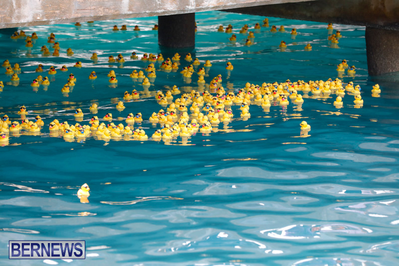 Rubber-Duck-Derby-Bermuda-June-3-2018-2-458