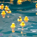 Rubber Duck Derby Bermuda, June 3 2018-2-462