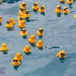 Rubber Duck Derby Bermuda, June 3 2018-2-473