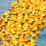 Rubber Duck Derby Bermuda, June 3 2018-2-481
