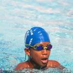 Swimming Bermuda June 13 2018 (8)