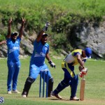 cricket Bermuda June 20 2018 (11)