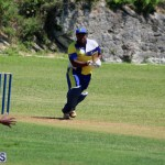 cricket Bermuda June 20 2018 (14)