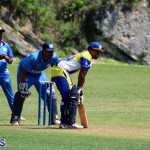 cricket Bermuda June 20 2018 (9)