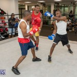 Aries Sports Center celebrity boxing for charity Bermuda, July 28 2018-9357