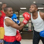 Aries Sports Center celebrity boxing for charity Bermuda, July 28 2018-9377