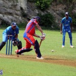Cricket Bermuda July 4 2018 (19)