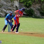 Cricket Bermuda July 4 2018 (7)