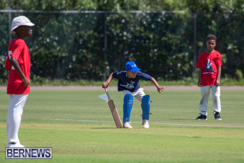 Department-of-Youth-and-Sport-Annual-Mini-Cup-Match-Bermuda-July-26-2018-8445