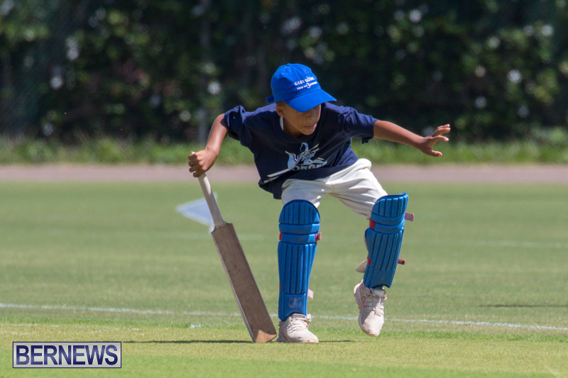 Department-of-Youth-and-Sport-Annual-Mini-Cup-Match-Bermuda-July-26-2018-8446