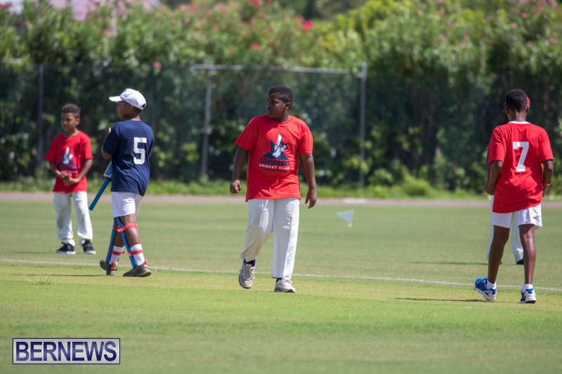Department-of-Youth-and-Sport-Annual-Mini-Cup-Match-Bermuda-July-26-2018-8479