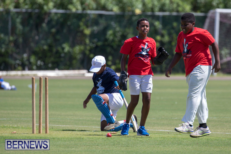 Department-of-Youth-and-Sport-Annual-Mini-Cup-Match-Bermuda-July-26-2018-8563
