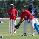 Department of Youth and Sport Annual Mini Cup Match Bermuda, July 26 2018-8694