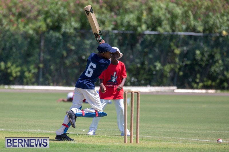 Department-of-Youth-and-Sport-Annual-Mini-Cup-Match-Bermuda-July-26-2018-8726