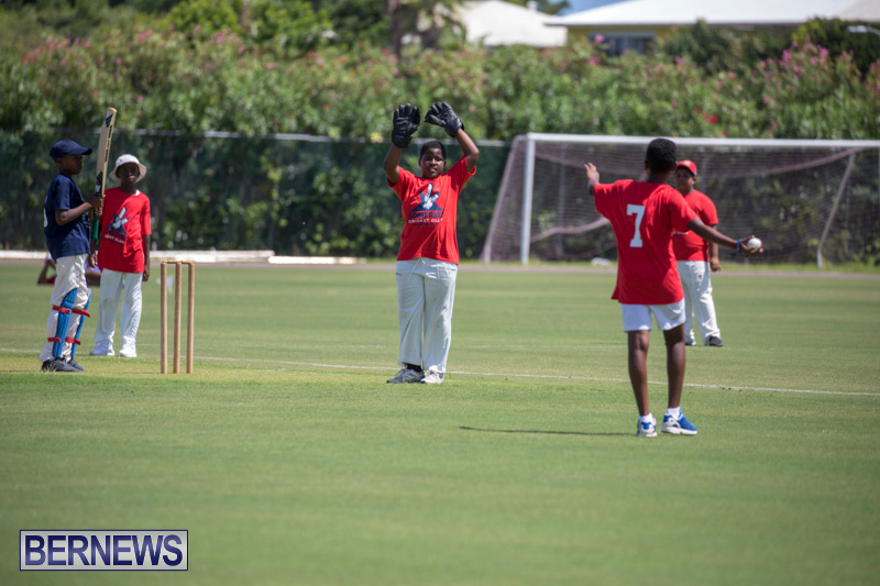 Department-of-Youth-and-Sport-Annual-Mini-Cup-Match-Bermuda-July-26-2018-8763