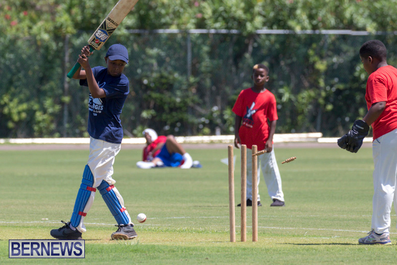 Department-of-Youth-and-Sport-Annual-Mini-Cup-Match-Bermuda-July-26-2018-8905