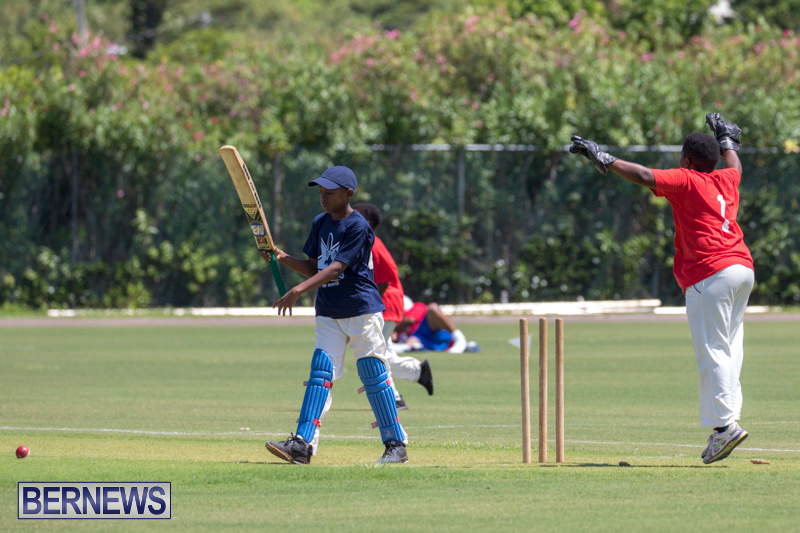 Department-of-Youth-and-Sport-Annual-Mini-Cup-Match-Bermuda-July-26-2018-8908