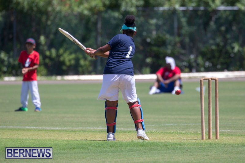 Department-of-Youth-and-Sport-Annual-Mini-Cup-Match-Bermuda-July-26-2018-9000