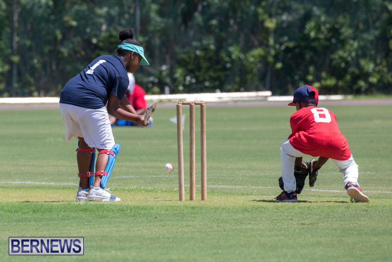 Department-of-Youth-and-Sport-Annual-Mini-Cup-Match-Bermuda-July-26-2018-9082