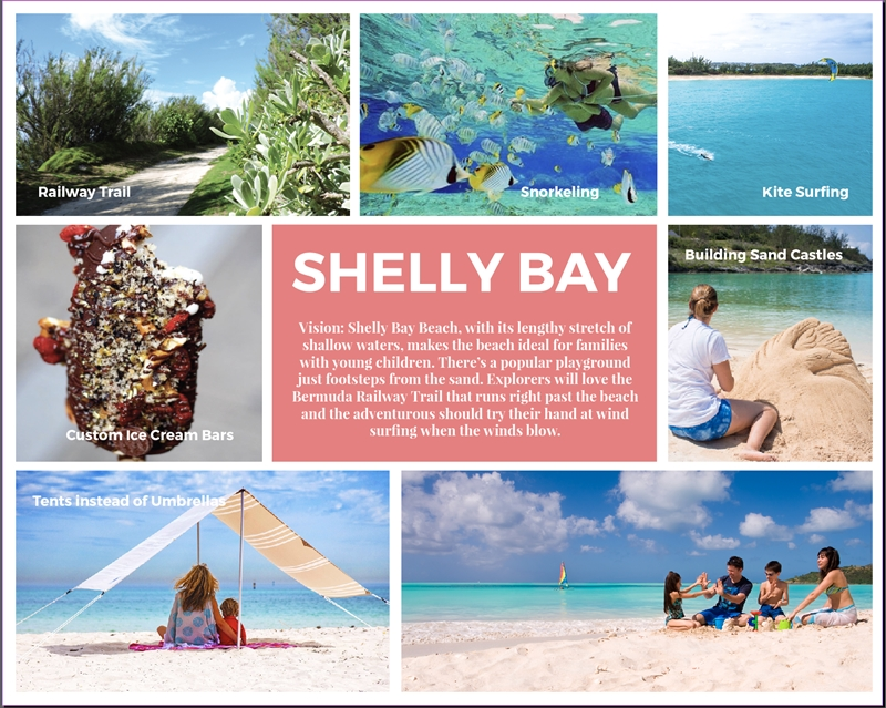 Shelly Bay Screen Shot Vision Board