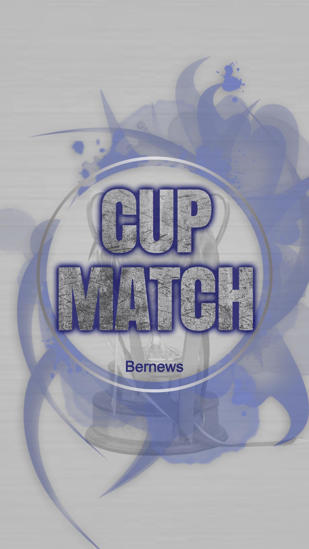 cupmatch wallpaper 6t4353