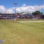Cup Match Day 2 Bermuda, August 3 2018-2789