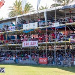 Cup Match Day 2 Bermuda, August 3 2018-2826