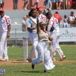 Cup Match Day 2 Bermuda, August 3 2018-2841