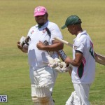 Eastern County Game Flatts Victoria Cleveland Bermuda, August 18 2018-8826