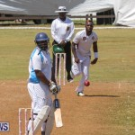 Eastern County Game Flatts Victoria Cleveland Bermuda, August 18 2018-8939