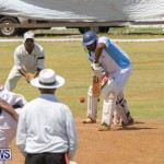 Eastern County Game Flatts Victoria Cleveland Bermuda, August 18 2018-9026