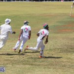 Eastern County Game Flatts Victoria Cleveland Bermuda, August 18 2018-9126