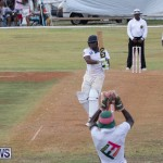 Eastern County Game Flatts Victoria Cleveland Bermuda, August 18 2018-9355