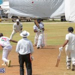 Eastern County Game Flatts Victoria Cleveland Bermuda, August 18 2018-9534